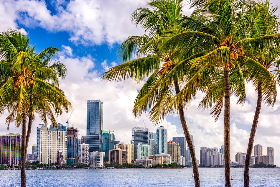 A picture of the Miami skyline.